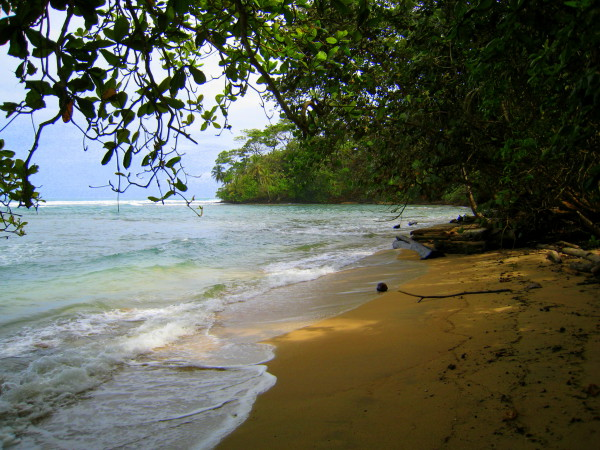 One of the tiny beaches you can have all to yourself in the Gandoca Manzanillo wildlife refuge, southern Caribbean coast looking towards Punta Mona