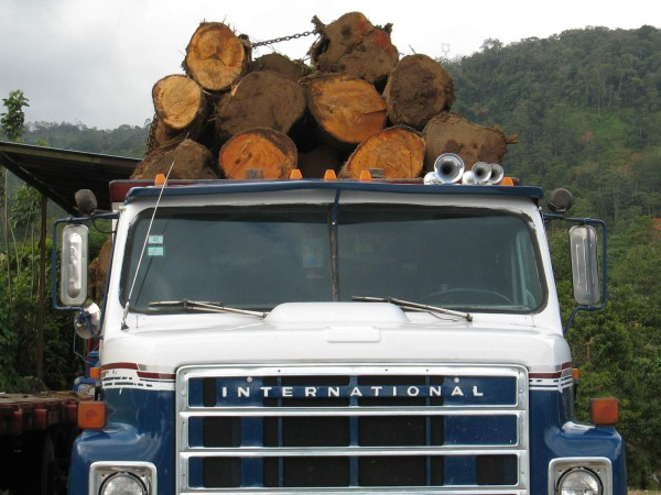 Log truck in Azúl near Turrialba - we saw them clearing the forest for a new housing development as we were returning to town from Turrialba National Park