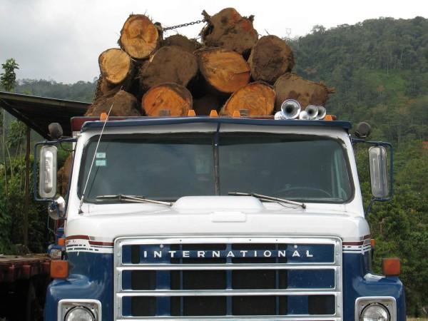 Log truck in Azúl