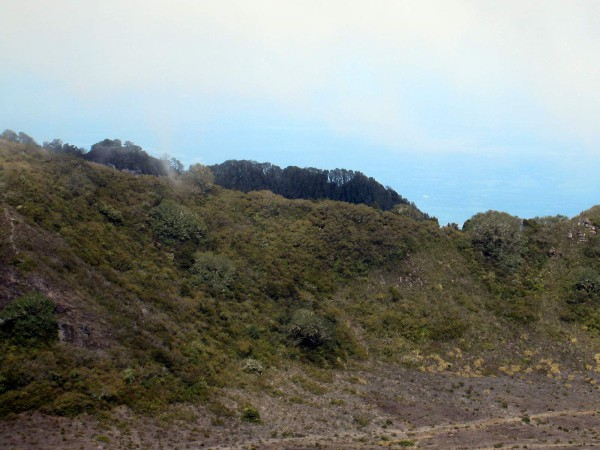 The trees stop abruptly at the crater rim due to the wind and toxic ground