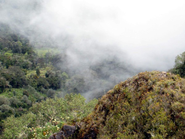 Misty clouds at the top of sendero mirador Volcán Turrialba National Park