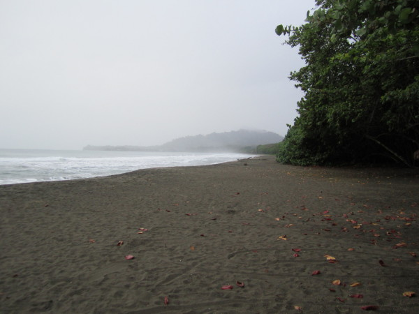 Playa Negra north of Puerto Viejo de Talamanca