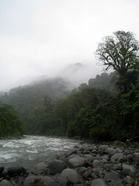 Mist over the Río Coén
