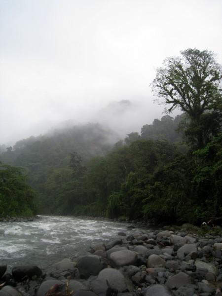 Mist over the Río Coén