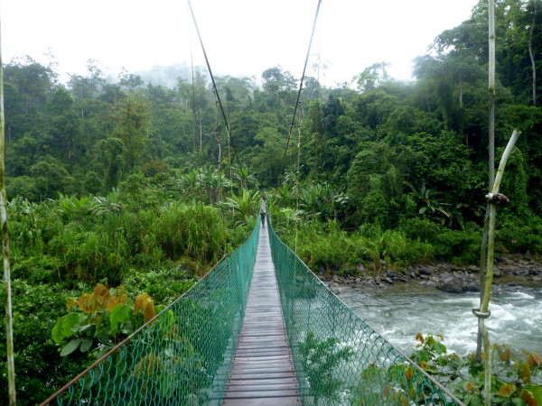 Most of the suspension walking bridges in Costa Rica are at tourist attractions but a few are still the only way to get from one side of a river or ravine to the other.