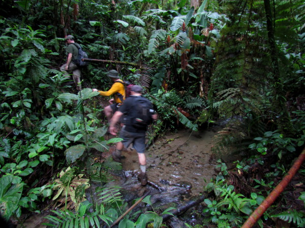 We crossed thousands of tiny creeks, streams and quebradas