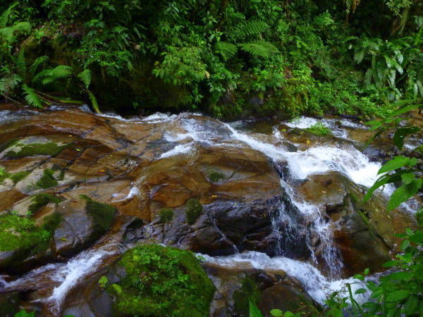 One second I'm standing up on a ledge taking a photo of the river rushing fifteen or twenty feet below...