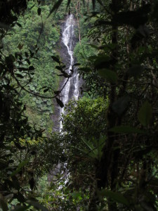 The toughest waterfall hike ever.  It took five and a half days of hard going to reach