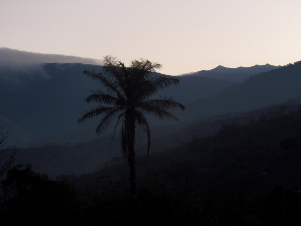 Clouds formed over the cloud and rain forests then poured down the mountainsides and re-evaporated in the deforested valleys