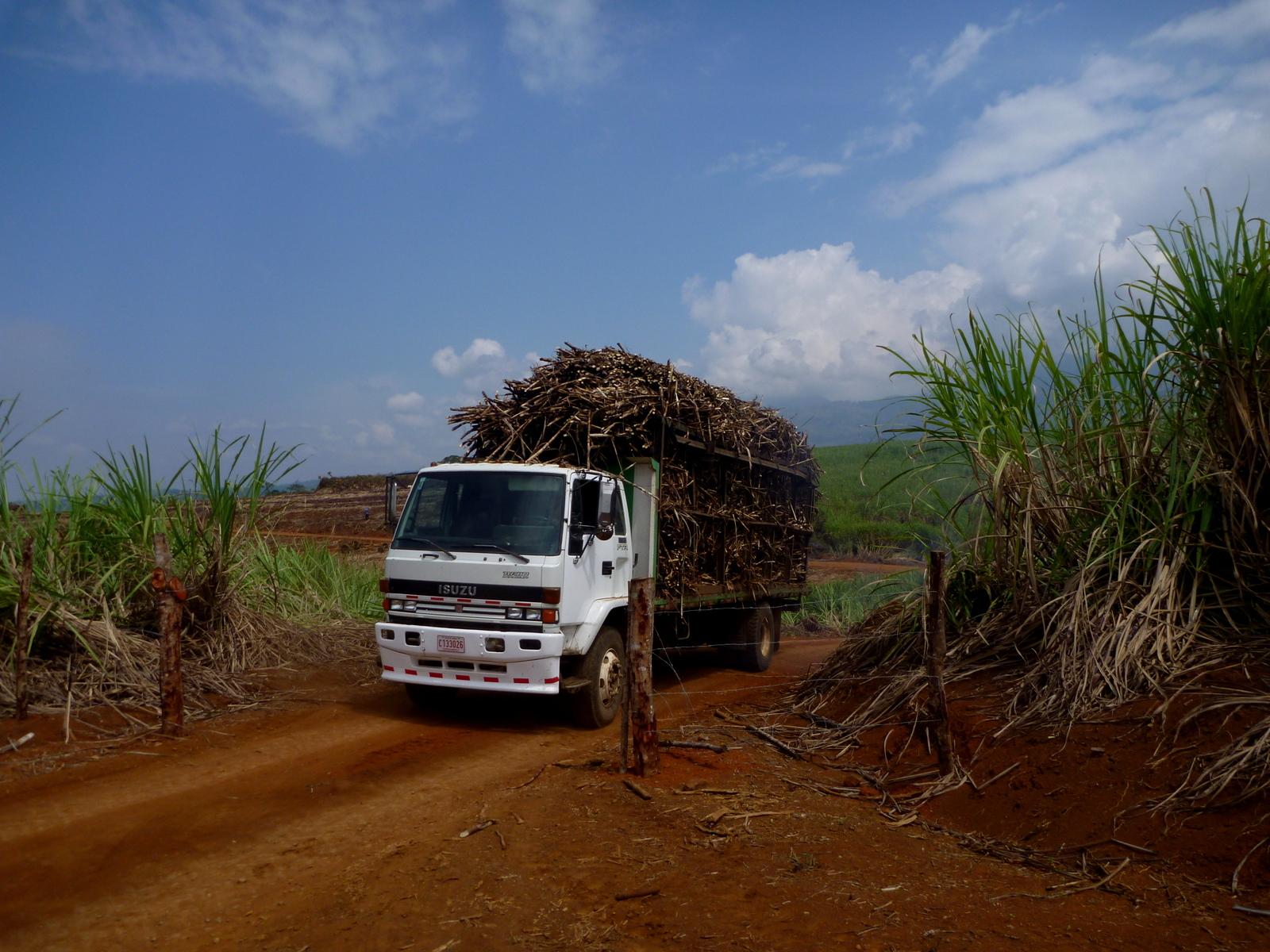 Uber Price Quote >> Sugar cane truck