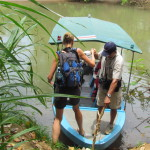 Canopied motor launches are a great way to spend a day on the river and in the wetlands