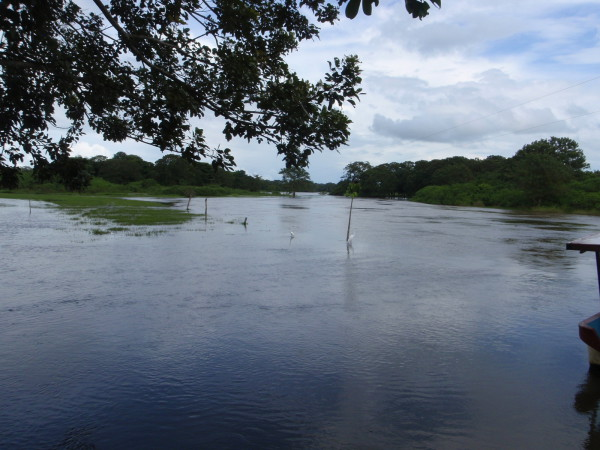Rio Frio flooded in the rainy season