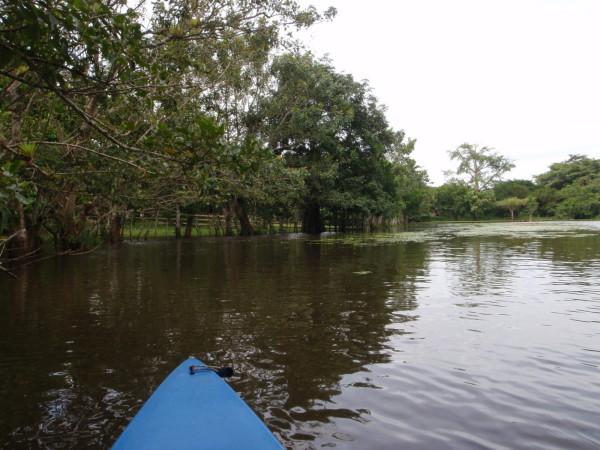 A lagoon