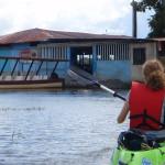 Kayak right up to the bar near Cano Negro along the Rio Frio Costa Rica