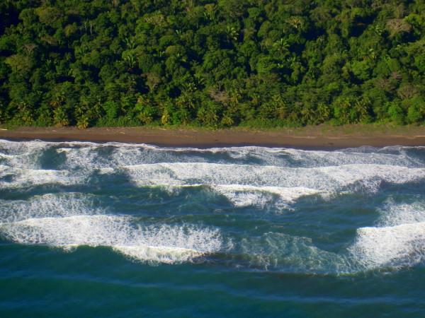Playa Parismina, Caribbean