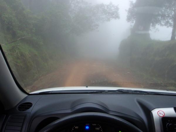 Driving through the cloud forest Volcan Barva