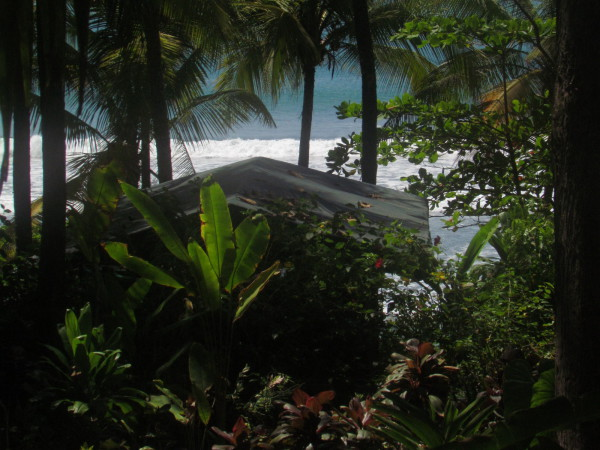 The tents are isolated from each other by the forest along the beachfront
