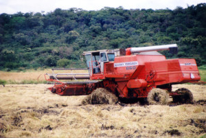 A rice harvester with the forests of Palo Verde National Park in the background.  On our way to the back entrance along the banks of the Bebederro River.
