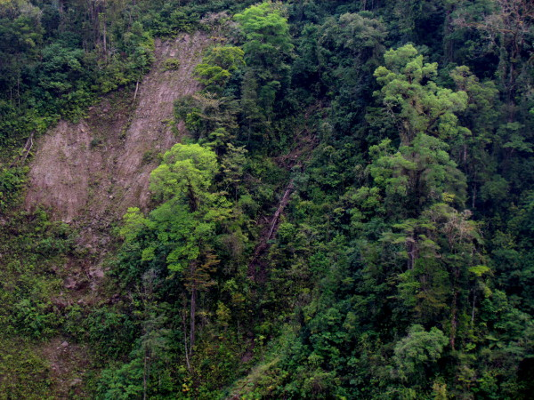 Light gap left by a landslide above the Rio Sarapiqui in the 2009 Cinchona earthquake