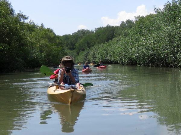 ug Head Net in the Mangroves