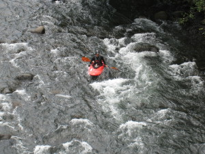 Kayaker on the Sarapiqui