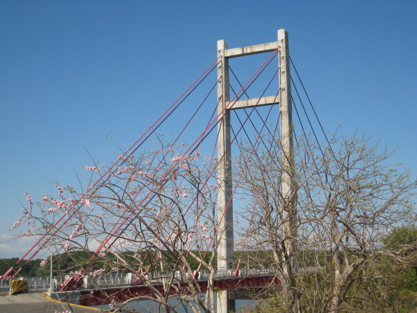 Friendship bridge over the Rio Tempisque