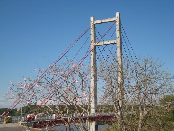 Friendship bridge over the Rio Tempisque