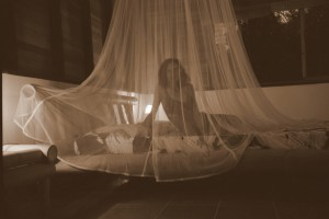 Sue under the mosquito net