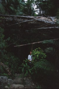 Manuel Antonio trail