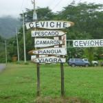 Costa Rican Ceviche Recipe (Marinated Raw Seafood)