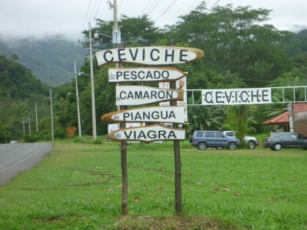Ceviche de Viagra is code for turtle eggs - steer clear