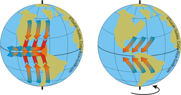Coriolis Effect on Trade Winds
