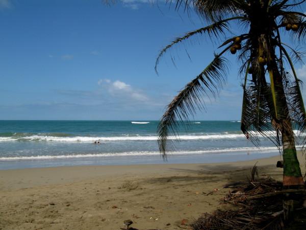 Playa Manzanillo southern Caribbean