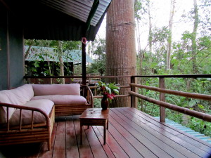 Our treehouse terrace at Tortuga Negra