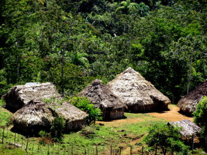 Indigenous houses