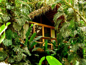Pacuare Lodge - backcountry eco-luxury