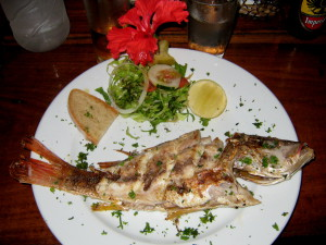 Fish Dinner Cahuita