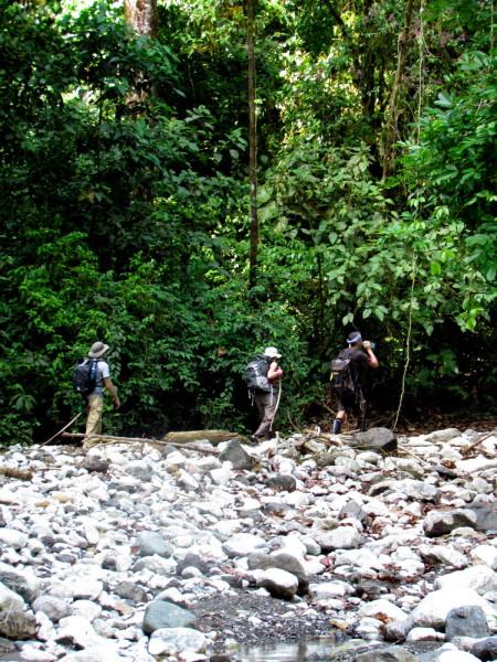 Trekking the little known Sendero de Oro Corcovado