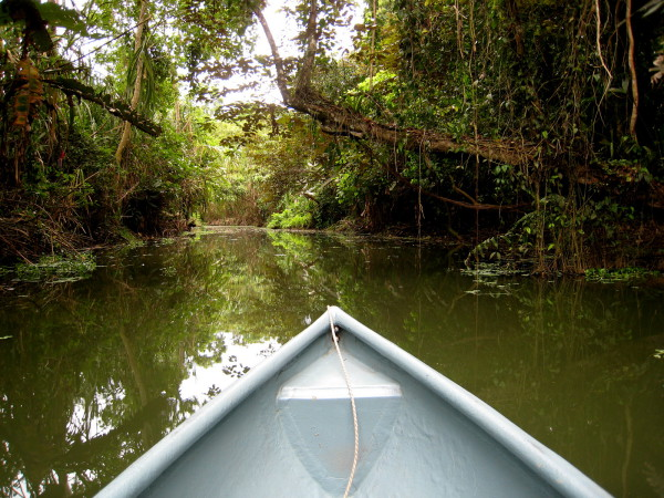 Canoeing on a Caribbean canal