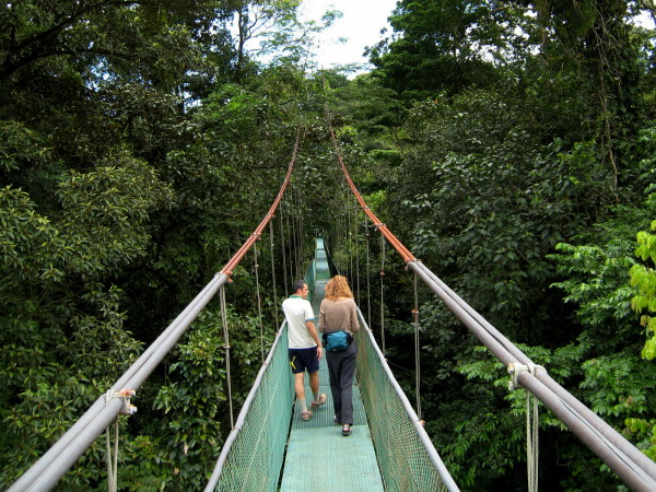 Tirimbina Rainforest suspension bridge