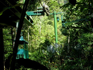 Rainforest Aerial Tram Pacific