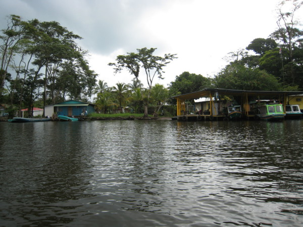 Tour boats waiting at the dock at Tortuguero village