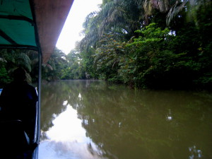 Lancha leaving Tortuguero