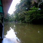 Nature Cruise Water Safaris