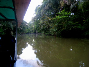Motor launch on Tortuguero lagoon