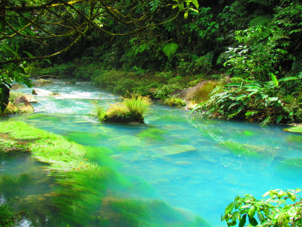 "The ""Blue Lagoon"" Rio Celeste"