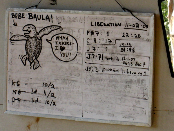 Schedule for hatching and release of Leatherback (Baula) turtles at playa Camaronal