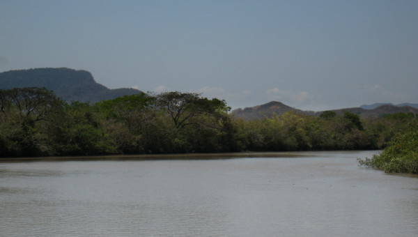 Rio tempisque from the shore in Palo Verde National Park