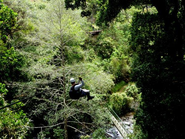 Zipline over the Rio Savegre