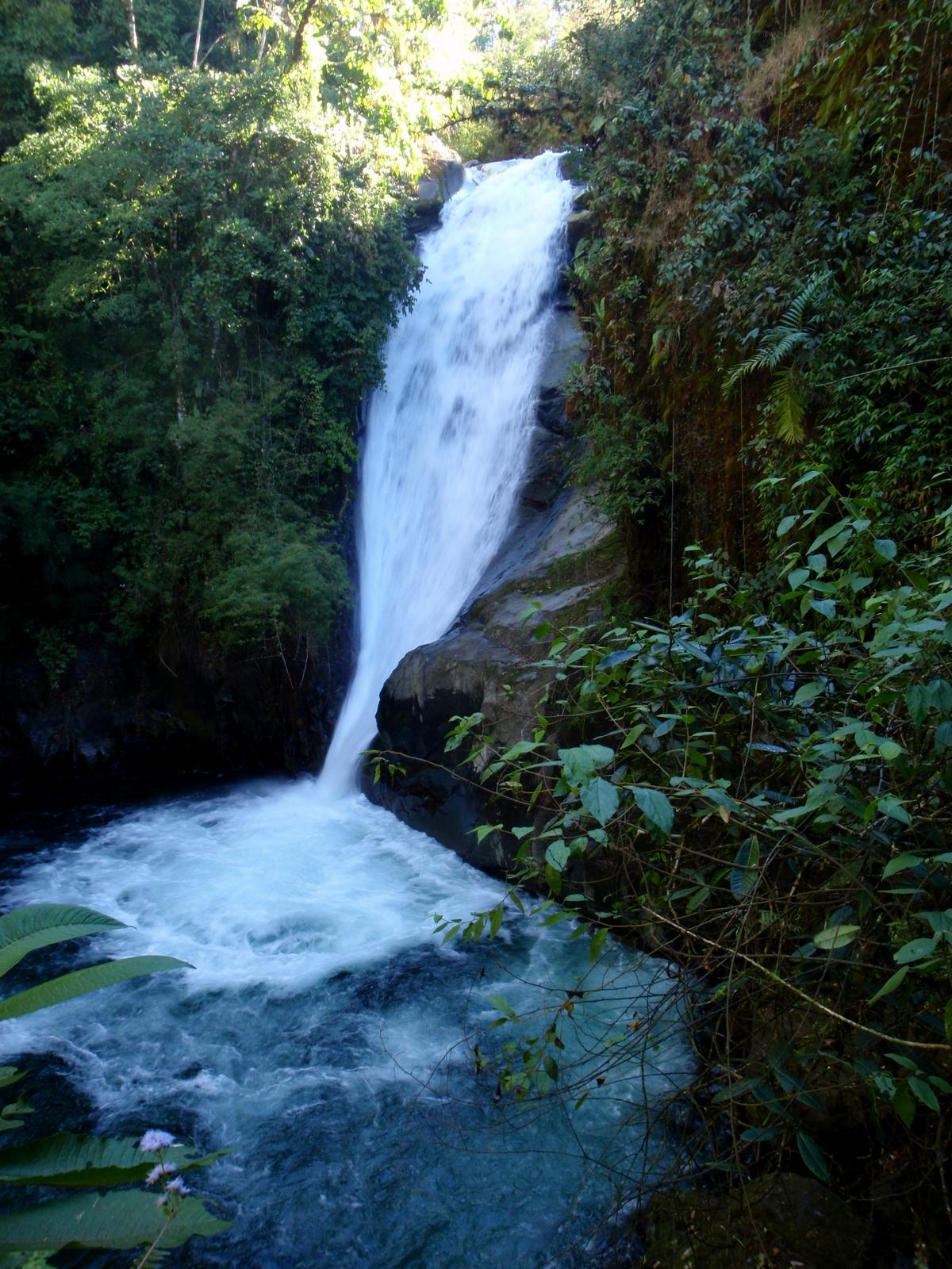 Cerro Chirripó National Park Costa Rica